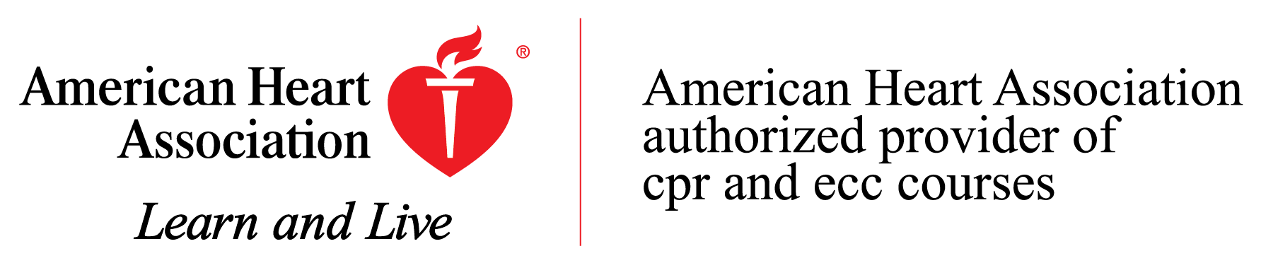 Lifeguard Cpr Certifcation Classes In Westchester Putnam Dutchess